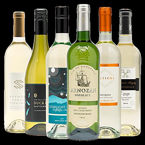International Sauvignon Blanc Half-Case