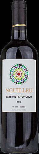 2016 Nguilleu Cabernet Sauvignon